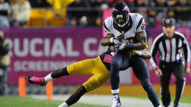 Texans' Andre Johnson Passes Steve Largent for 14th in Career Receiving Yards
