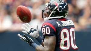 Photo: Houston Texans